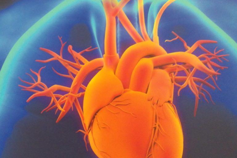 Tydzień dla Serca. W dobie pandemii należy pamiętać o sercu